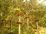 Rokytnice nad Jizerou im Sommer– Appartements Ilona